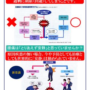 〓E1選手権:日本代表対中国代表戦の件を前振りに、「ひざ・股関節の痛みは週1回スクワットで治せる」