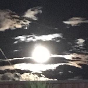 明日、明後日は「月光浴」で月のパワーを♡
