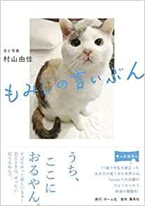 猫と暮らすこと