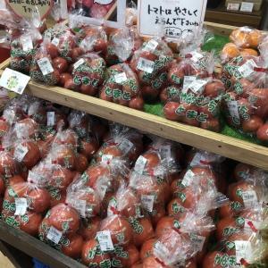 大洗まいわい市場 本日も新鮮お野菜入荷してます