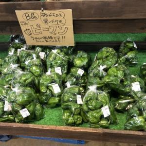 大洗まいわい市場 夏野菜続々入荷しております♪