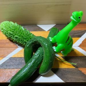 恐竜がやってきた
