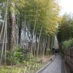伊豆旅行のつづき その5 修善寺巡り