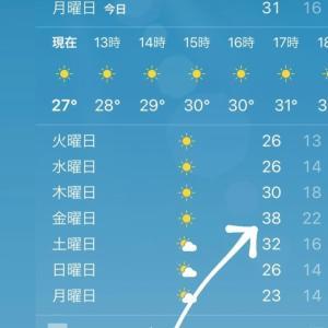 ちょっとおかしな夏。