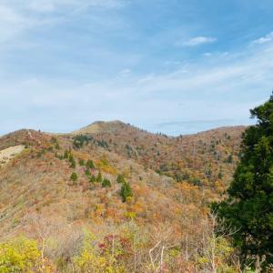 黄葉の武奈ヶ岳