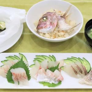 今日は魚のさばき方教室~鯛!