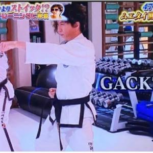 テコンドーテレビ放映 予告!
