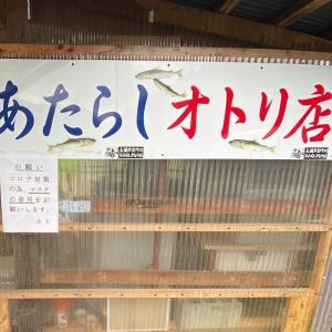 長瀬太郎生に行ってみた 7/26