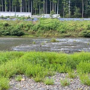 久しぶりぶり吉野川