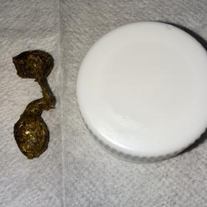 イヤリングサイズの数珠●