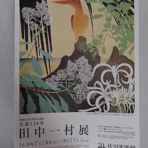 """・佐川美術館""""田中一村展""""へ。"""