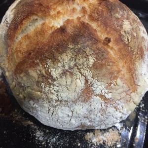 ほったらかしパン