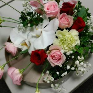 高価な花材コチョウランを使って優雅なレッスン♪