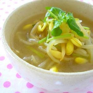 お財布に優しい!食べごたえ抜群な「豆もやしスープ」レシピ5選