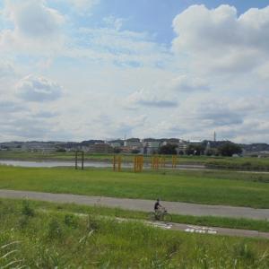 調布近郊・その 845 「多摩川原橋」。
