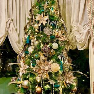 我が家のクリスマスツリー★