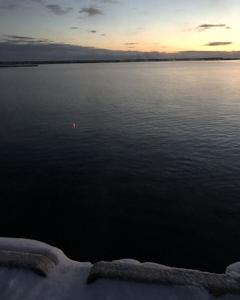 クチグロマス、夜釣り