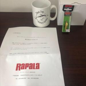 ラパラから、謎の箱が届きました、、、