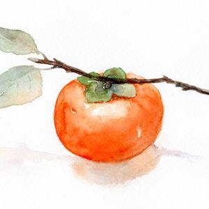 柿渋でコロナ不活化?