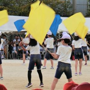 15回目の小学校の運動会