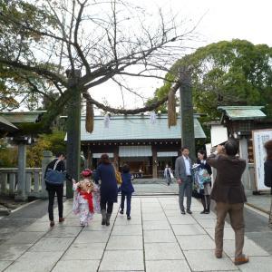 緑園での日々のこと(34):日本と韓国