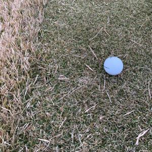 芝が薄くなると飛ばなくなる