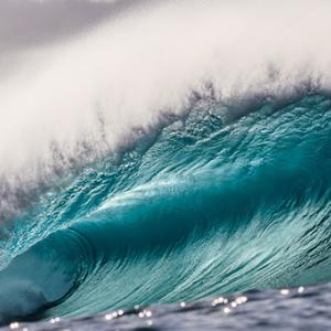 O'Neill Wave of the Winter November Top Five