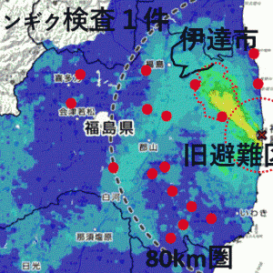 Wildlife captured on video in Fukushima