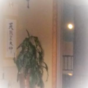 和室の一部になったお月さまにうっとり!  「優舞美」の布製・帯締め入れ