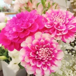 最近の仕入れたお花やオーダーアレンジ☆彡