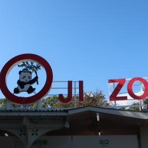 パンダのタンタン🐼を見に、王子動物園へ