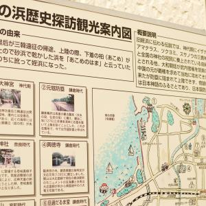 博多湾に浮かぶ自然豊かで美しい島、能古島へ🚢~