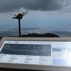 六甲山 展覧台~TENRAN CAFEでランチ🍴
