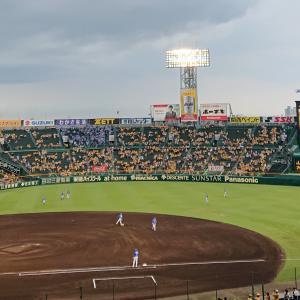 甲子園~'19.7月②(ウル虎の夏2019)阪神vs.DeNA