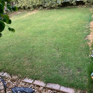 芝刈り・施肥