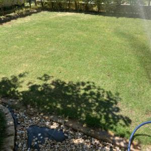 芝刈り・灌水
