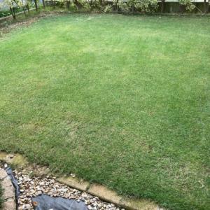 芝刈り 2020.07.05