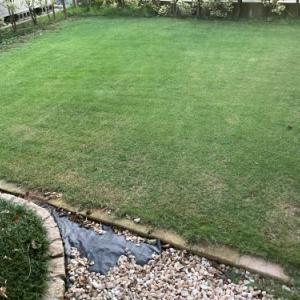 芝刈り 2020.08.13
