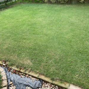 芝刈り・施肥・灌水 2020.09.20