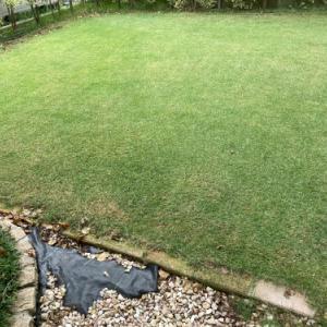 芝刈り 2020.09.26