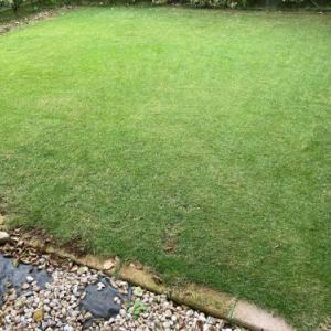 芝刈り 2021.08.22