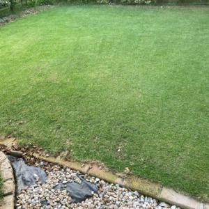 芝刈り 2021.09.11