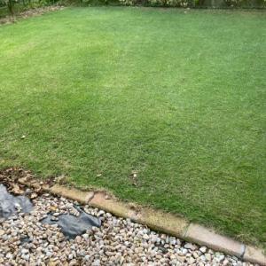 芝刈り 2021.09.19