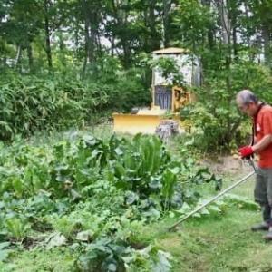 芝刈りなど