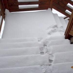 初雪投げ作業