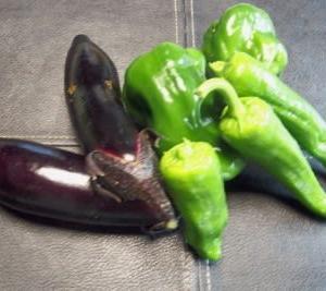 夏の野菜達
