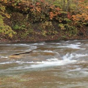 紅葉の旅2)恵庭渓谷・白扇の滝