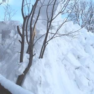 屋根からの落雪1)