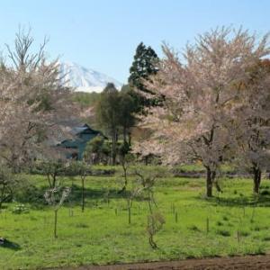 春を探してその2 2)里山風景