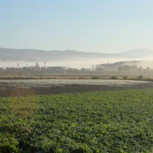 羊蹄山と日の出3)朝を迎えた街